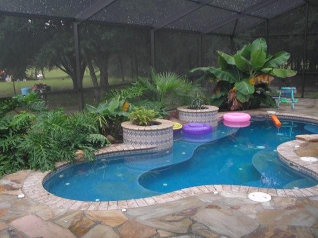 Spools swimming pools joy studio design gallery best for Built in swimming pools